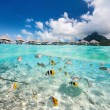 Tropical island under and above water — Stock Photo #58209243