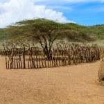 Masai village — Stock Photo #58739303