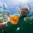 Tourist snorkeling in Jellyfish Lake — Stock Photo #66995483