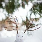 Japanese snowman — Stock Photo #66996935
