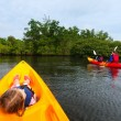 Family kayaking in mangroves — Stock Photo #68882443