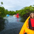 Family kayaking in mangroves — Stock Photo #70714521