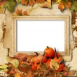 Pumpkins, autumn leaves and frame for photo on vintage backgroun — Stock Photo #53784437