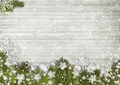 Christmas fir tree with snowfall — Stock fotografie