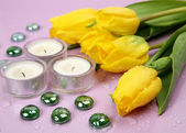 Candles and tulips — Stock Photo
