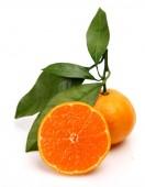 Ripe oranges — Stock Photo