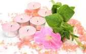 Pink flower and candles — Stock Photo