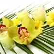 Yellow orchids and candles — Stock Photo #54716883