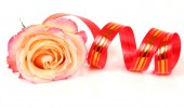 Rose and streamer — Stock Photo