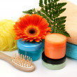 Objects for care of a body — Stock Photo #59973033