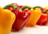 Row of colored bell peppers — Stock Photo