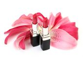 Petals of a pink lily and lipsticks — Stock Photo