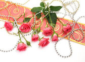 Pink roses and beads — Stock Photo