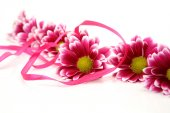 Flowers with red ribbon — Stock Photo