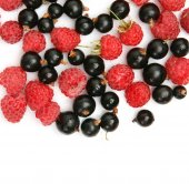 Ripe berries pile — Stock Photo