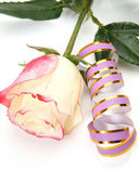 Rose and pink streamer — Stock Photo