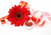 Red Flower and candle — Stock Photo