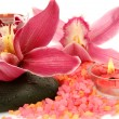 Pink orchids and candles — Stock Photo #65600639