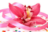 Pink orchid and confetti — Stock Photo