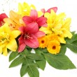 Bouquet of lilies  and asters — Stock Photo #67818935