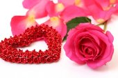 Decorative heart and pink rose — Stock Photo