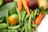 Ripe fresh vegetables — Stock Photo