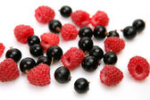 Ripe currants and raspberries — Stock Photo