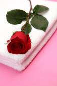Bath towels with  rose — 图库照片