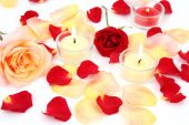 Pink and yellow roses  and candles — Stock Photo