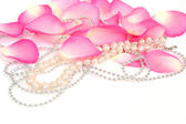 Petals of pink rose with necklace — Stock Photo