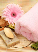 Towel and flower close-up — Stock Photo
