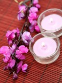 Candles and pink flowers — Stock Photo