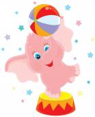 Little circus elephant — Stock Vector