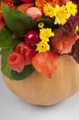 Pumpkin flower arrangement — Stock Photo