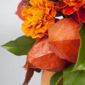 Physalis and marigolds — Stock Photo