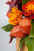 Physalis and marigolds — Stock Photo