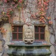 House wall, fountain with colorful vines and autumn leaves — Stock Photo #59392535