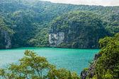 Emerald Lake — Stock Photo