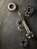Bearing and gear — Stock Photo