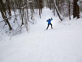 クロスカントリー スキー — ストック写真