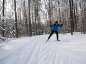Cross country skis — Stock Photo