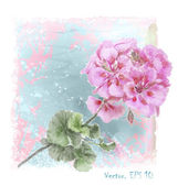 Hand drawn  watercolor pink geranium flower — Vetorial Stock