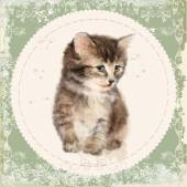 Vintage card with fluffy kitten. Imitation of watercolor paintin — Vetor de Stock