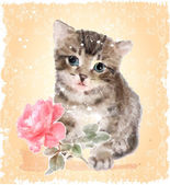 Fluffy kitten with rose.  Vintage postcard.  Imitation of waterc — Stock Vector
