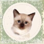 Vintage card with thai kitten. Imitation of watercolor painting. — Stock Vector