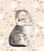 Kitten.  Imitation of watercolor painting. — Stock Vector