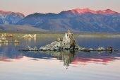 Shallow lake — Stock Photo