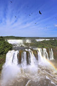 Roaring falls in South America — Stock Photo