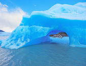 The iceberg and cold water — Stock Photo