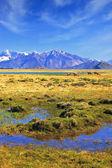 Valley National Park Perito Moreno — Stock Photo